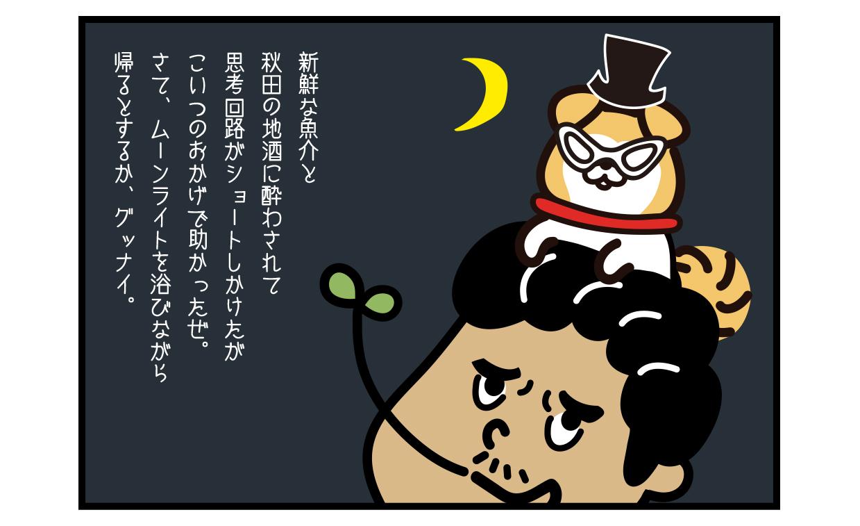 新鮮な魚介と秋田の地酒に酔わされて思考回路がショートしかけたがこいつのおかげで助かったぜ。 さて、ムーンライトを浴びながら帰るとするか、グッナイ。